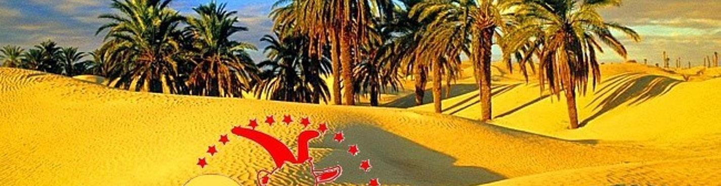 Новый год под звездами Сахары