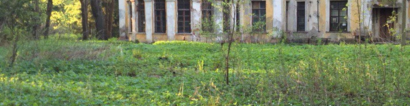 Три века Шуваловского парка