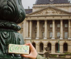 Stones never sleep: Прогуляйся по улицам и центру Брюсселя и раскроешь самые интересные тайны!! - экскурсия