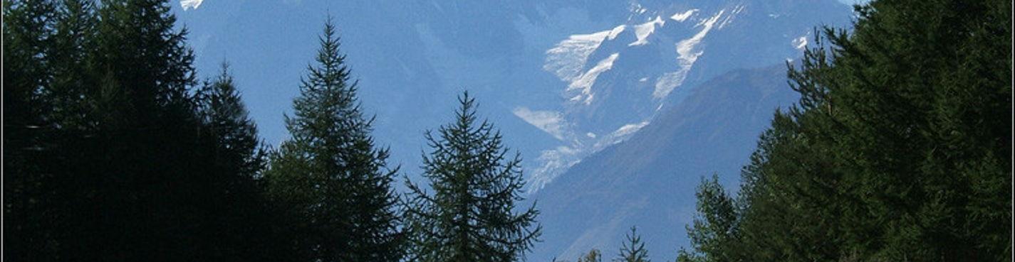 Поездка в Альпы