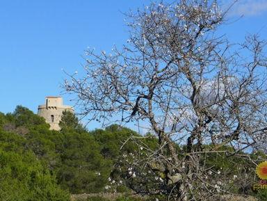 «Пиратская» башня Torre d'en Valls