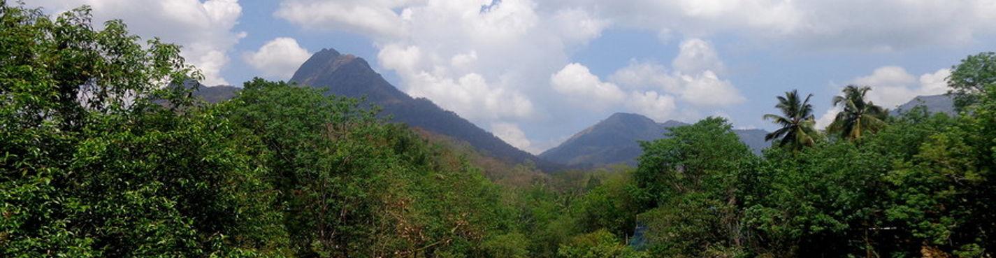 Кардамоновы горы