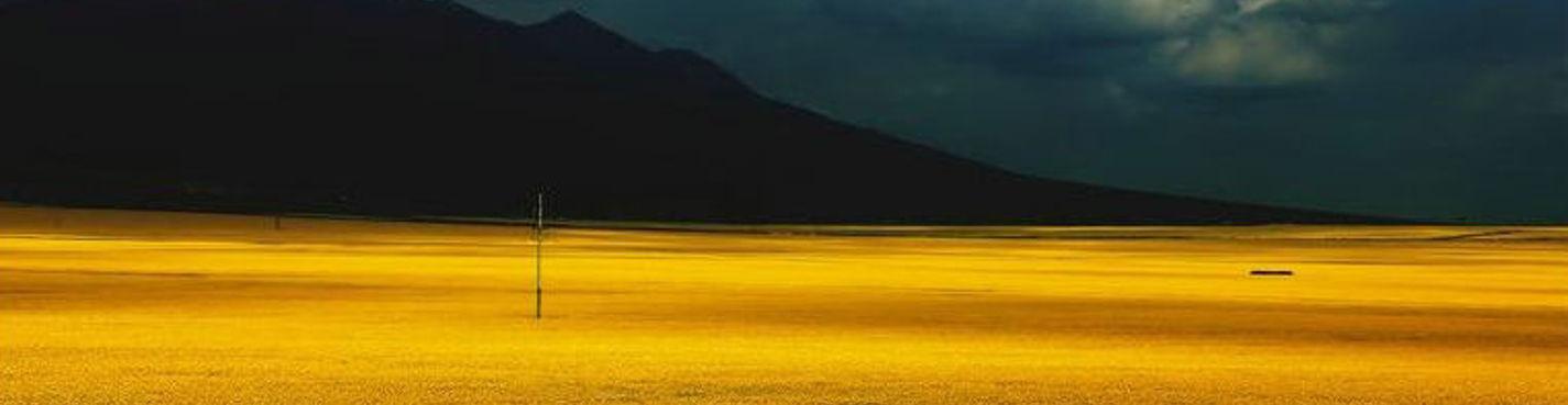 Туры в Чэнду — Синин, Озеро Цинхай+Рапсовое цветок море 6 дней
