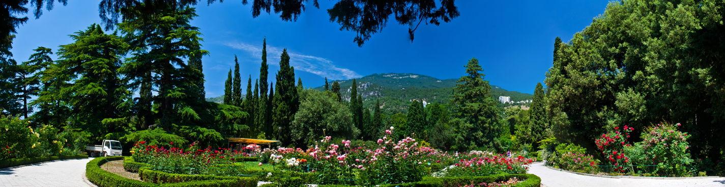 Никитский ботанический сад