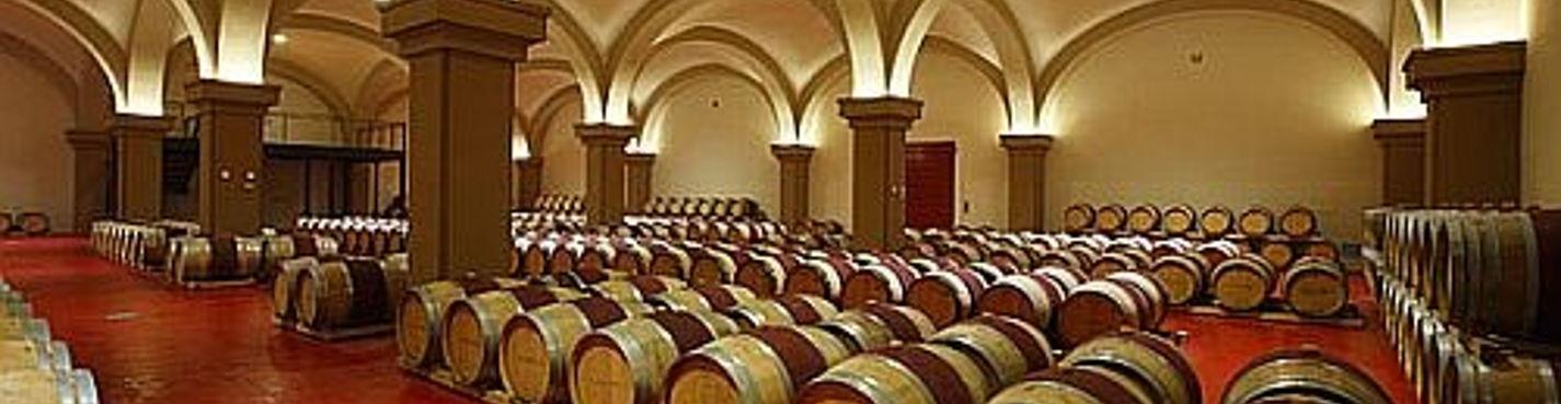 Дегустация элитных супертосканских вин в Болгери