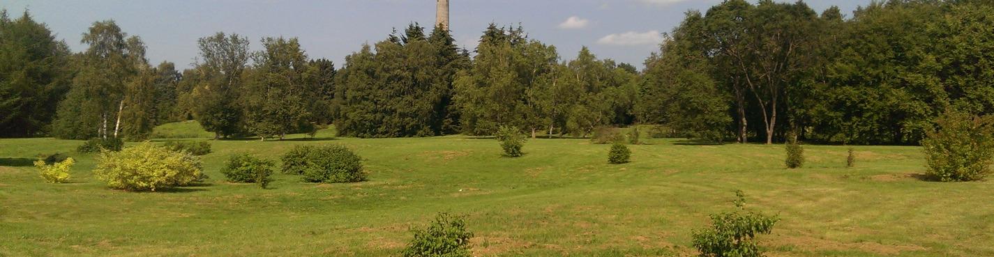 Воздушная экскурсия на Телебашню и Ботанический Сад