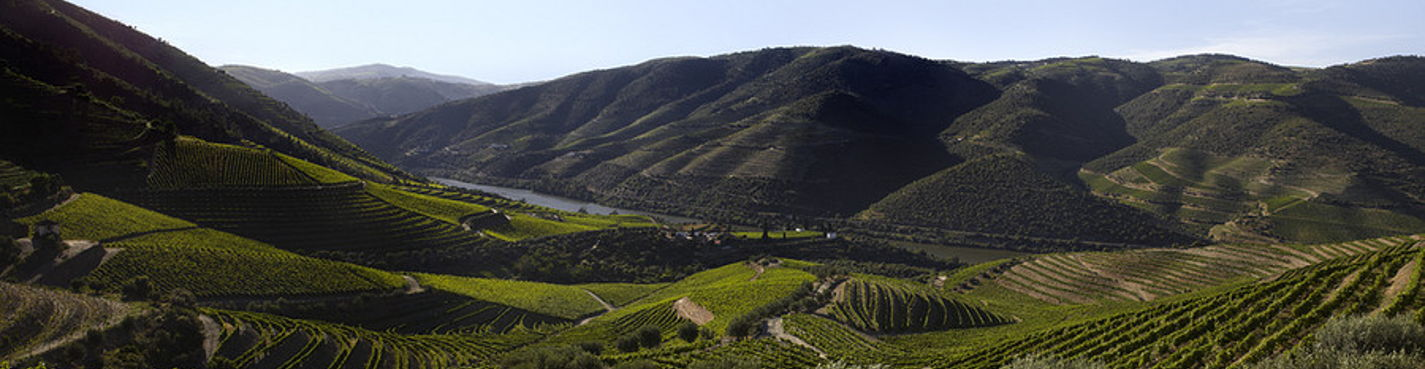 Красоты долины реки Доуру. Виноделы.