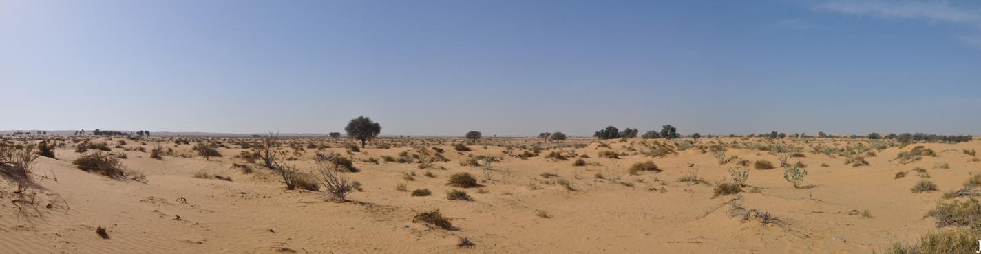 Шарджа и Парк Пустыни