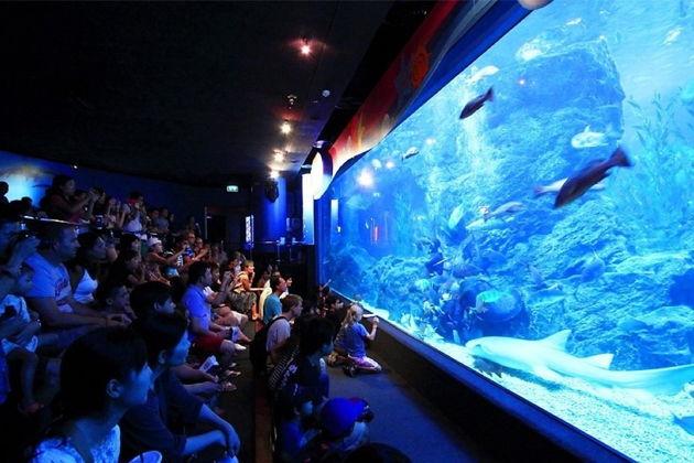 Бангкокский Океанариум (Siam Ocean World)