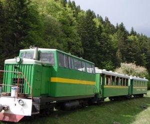 Карпатский Трамвай и Скалы Довбуша (выезд со Львова) - экскурсия
