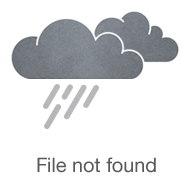 freedompop-privacy-phone.jpg