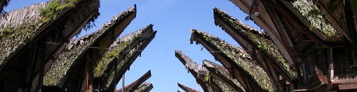 Южный Сулавеси