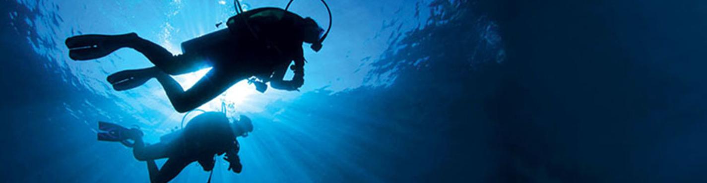 Дайвинг в открытом море