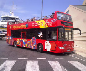 City sightseeing tours (1 day)