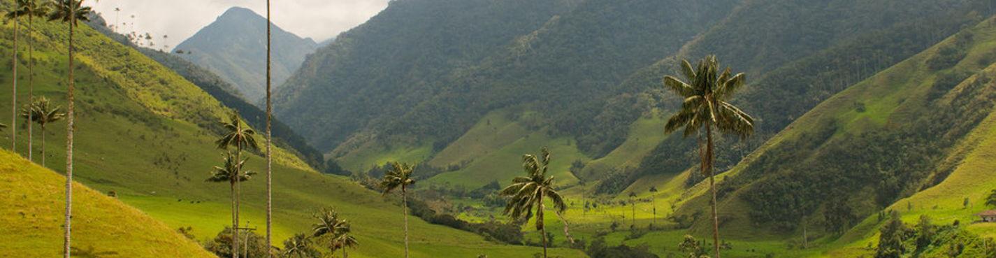 Тур в долину Кокора