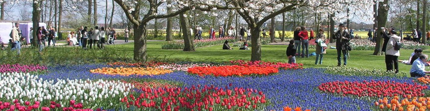 Экскурсия в королевский парк цветов Кейкенхоф