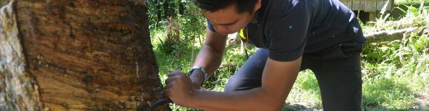 Приключения Ирины и Инги в  настоящей деревне Дусун