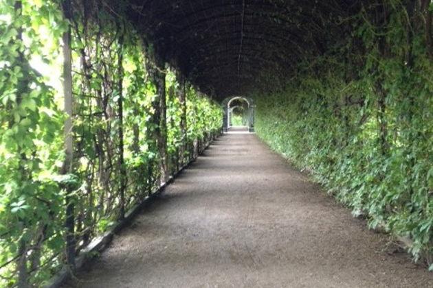 Посещение летней резиденции Габсбургов — дворца Шёнбрунн, включая шоу выпечки яблочного штруделя