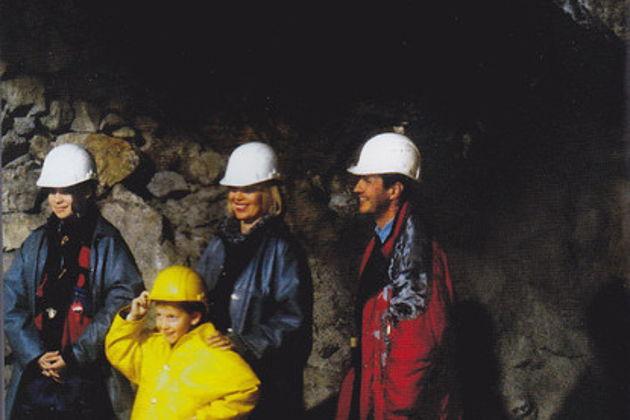 Серебряные рудники