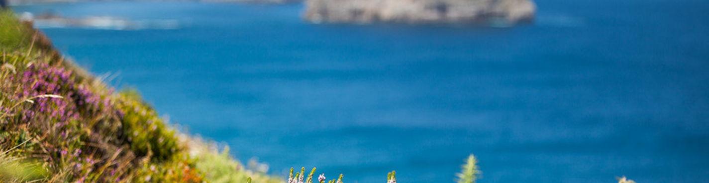 Сказочное побережье Басконии