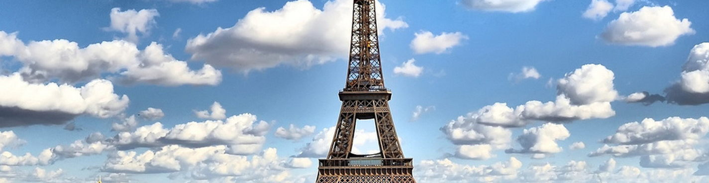 A sightseeing tour of Paris ( by car)