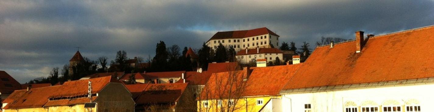 Замки и легенды словенской Штирии, Птуй, Жицкий монастырь, Марибор, авто-пешеходная экскурсия