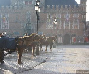Обзорная экскурсия по Брюгге - экскурсия