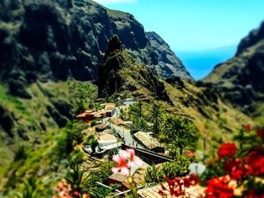 Индивидуальные обзорные экскурсии по острову Тенерифе