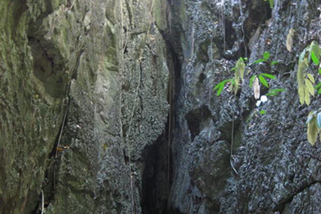 Экскурсия в Паттайя: Поездка в пещеры