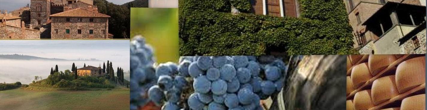 Дегустация вина и сыра + пейзажи Тосканы