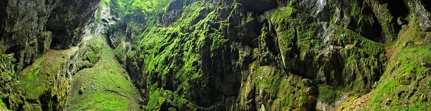 Моравский Крас, пропасть Мацоха и замок Пернштейн (выездная экскурсия)