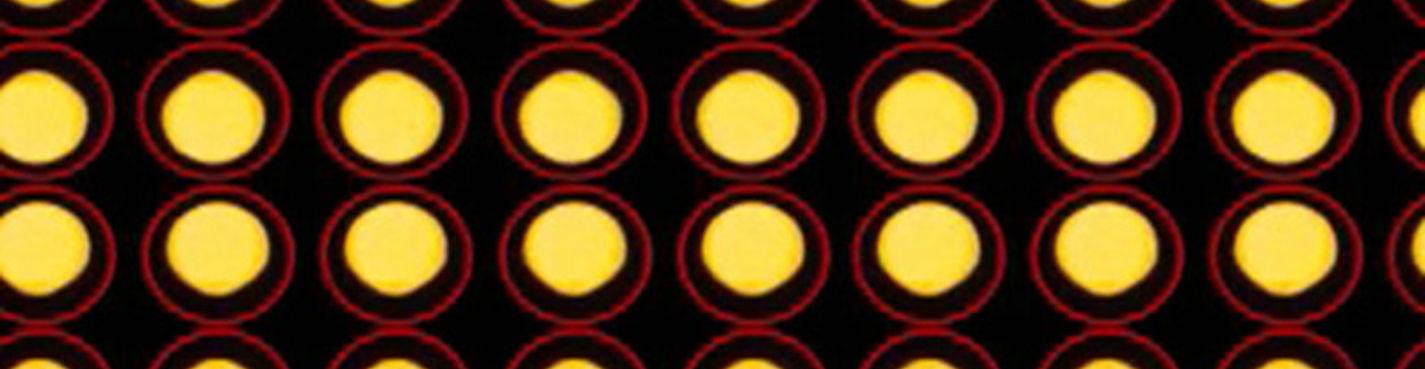 Городская мозаика: видео перфоманс Бьёрг Тарангер