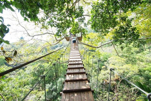 Экскурсия в Пхукете: Полет над джунглями